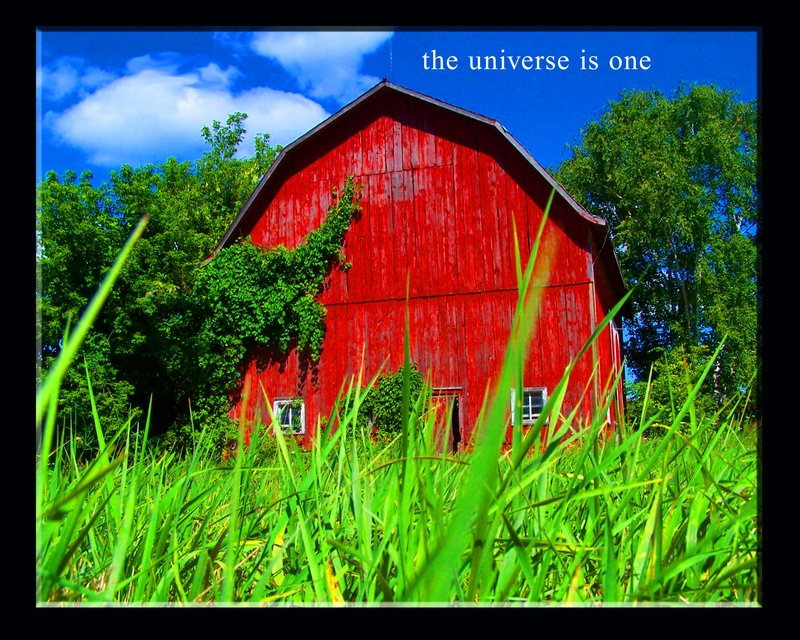 The Universe is One